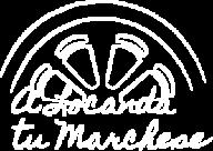 logo-t-300-white