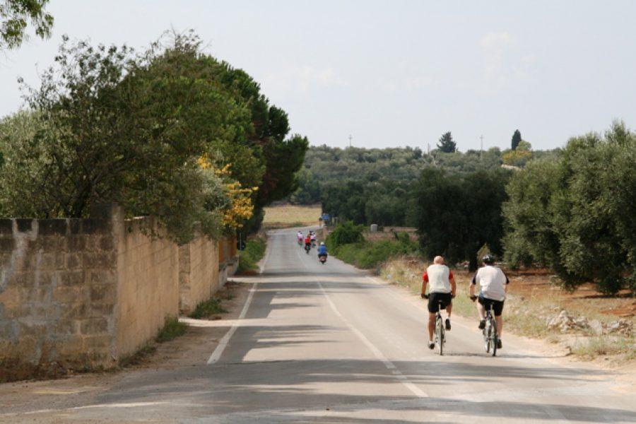 pedalare tra gli ulivi Salento