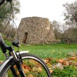 bike matino