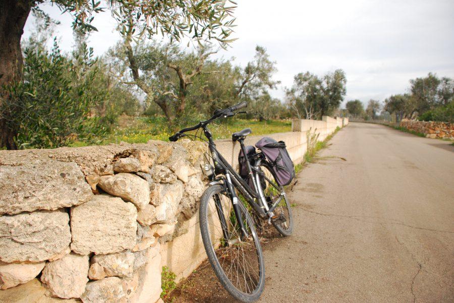 Una notte a Matino in bicicletta