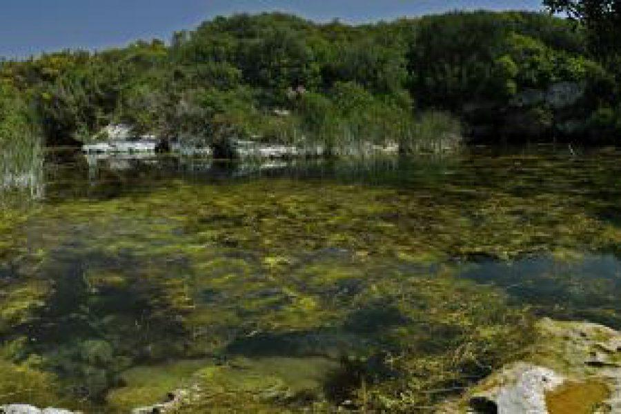 """Dove fare escursioni guidate in Salento: il fenomeno delle """"Spunnulate"""""""